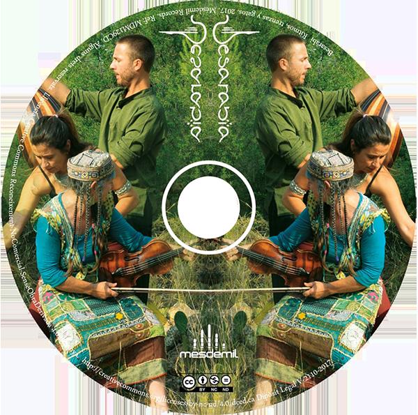 CD Besarabia